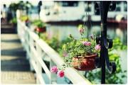 http://thumbnails12.imagebam.com/9933/a7cf3799322059.jpg